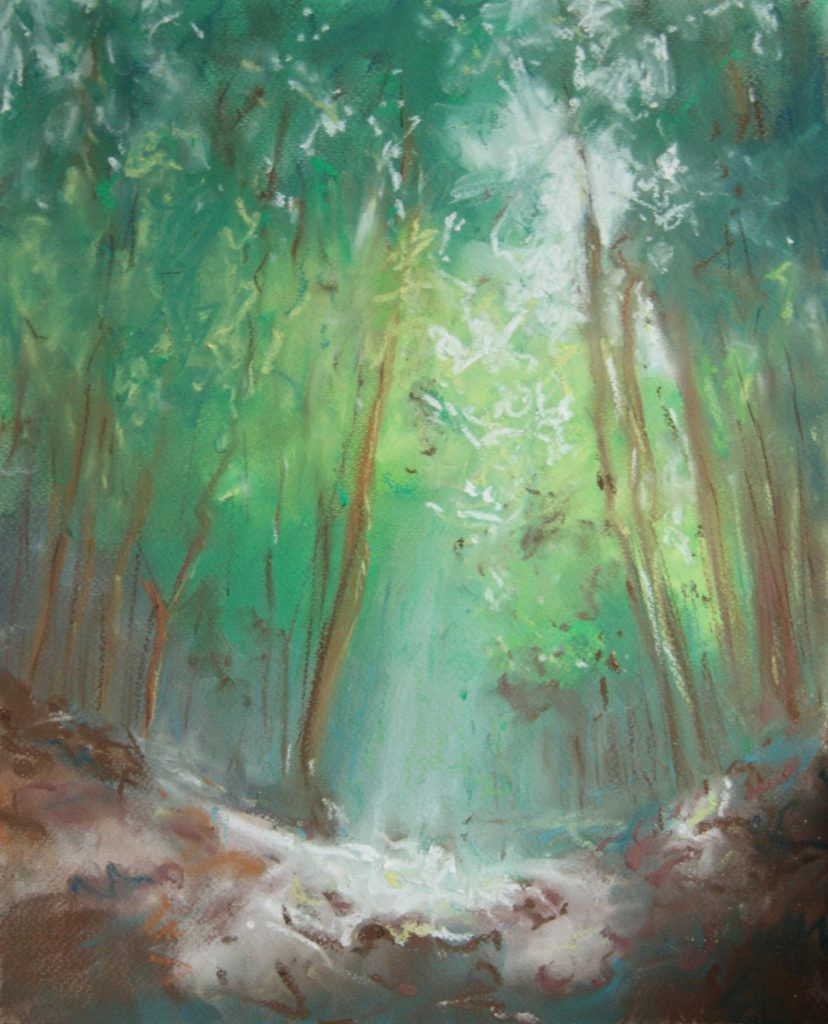 forest glow (2012)